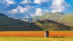 just married (Fr@tes) Tags: castellucciodinorcia castelluccio colori colors explore canon eos fioritura