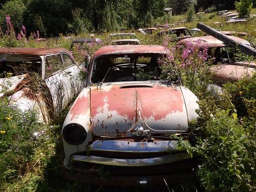 Le champ de voitures abandonénes semble s'étendre à l'infini