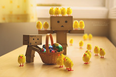 How do you eat yours? (.OhSoBoHo) Tags: cute yellow easter fun toy happy robot dof creative kawaii chicks cadburys symbolic japanesetoy odc happyeaster amazoncojp springchicken cardboardrobot cremeeggs peeppeep revoltech boxrobot canoneos40d danboard  danbolove beginswithac danbophotography amazoncardboardrobot spring2013 creativedanbophotography eastersunday2013 easterdanbo