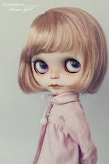 Hello Sugar! (-Poison Girl-) Tags: pink girl mouth hair nose rachel eyes doll dolls eyelashes cut bob fringe carving tommy sugar sleepy short blogged ribbon blythe freckles poison bangs custom gaze takara licca poisongirl meimei customs correction scalp blythes eyechips blythecustom rachelsribbon