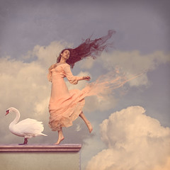 Evanesce (Veronica_Garcia1) Tags: sky bird texture beautiful clouds vintage painting happy death dance swan movement ballerina heaven sad smoke change fade float dissolve michaelparkes evanesce