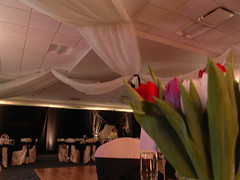60'x60' Ceiling Treatment (Hughie's Event Production Services) Tags: ceilingtreatment