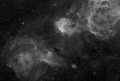 Gab-HA_MN61-l (Astroshed) Tags: monochrome carina nebula astrophotography astronomy deepspace luminance hydrogenalpha gabrielamistral emissionnebula Astrometrydotnet:status=solved Astrometrydotnet:version=14400 Astrometrydotnet:id=alpha20130479612210 astroshed