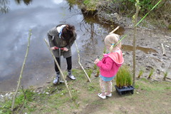 Rachel getting some help planting slough sedge. (BCWF Wetlands Education Program) Tags: bc britishcolumbia environmental wetlands restoration slough langley wetland sedge citizenscience bcwf townshipoflangley langleyenvironmentalpartnerssociety