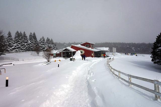 こんな閑散とした雰囲気で雪バナナボートがやっているのか?|キープファームショップ