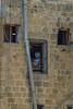 At a window in Saida
