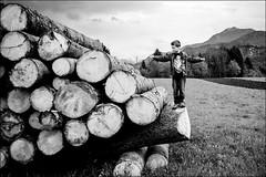 il legname, bene della Carnia (7) (andaradagio) Tags: bw italy canon italia carnia bianconero friuliveneziagiulia sigma1020 legname flickraward enemonzo andaradagio colzadienemonzo nadiadagaro