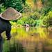 Chiang Mai - Tailandia-483-Editar