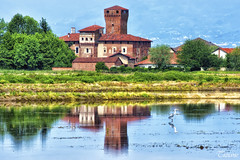 Balocco castle with stork (Tizi@no56 (painting with light)) Tags: panorama castle water reflections landscape acqua riflessi castello ricefields stork risaie cicogna balocco d7100 nikond7100
