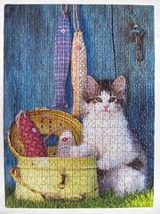 The Cat (Leonisha) Tags: cat fishing puzzle katze jigsawpuzzle