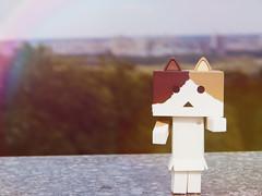image45645203 (sweet_orange) Tags: cat kitten toy adventure danbo