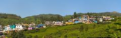 Munnar village (Zmeul Calator) Tags: munnar india hills village colours