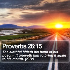 Daily Bible Verse - Proverbs 26:15 (daily-bible-verse) Tags: ministry priest scriptures mediator instapray photooftheday