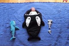 Where babies really come from (StoraDan) Tags: fs160904 vatttorrt fotosondag baby bebis