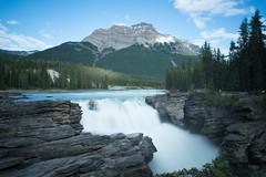 Athabasca Falls (coco_cn) Tags: alberta athabascafalls canada icefieldsparkway jaspernationalpark