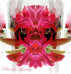Lilly Lip Kisses (rhonda_lansky) Tags: tigerlilyart pink lilly lillylips kisses faces plants creations formations stare darkeyes nature design abstract flowerart abstractflowers abstractoutdoors mirroredshapes mirroredabstract mirrorart symmetryart symmetrical symmetricalart symmetryartist symmetricalartist abstractart earth expressive lansky visual abstractplant rhondalansky surreal fantasy organicpattern art poems shortstories storys writing pattern