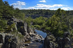 Heron View (eatkisson) Tags: rocks trees forest river landscape heron maryland