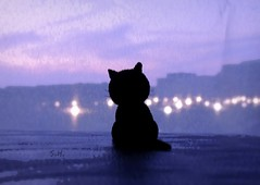 Welcome October! (pianocats16, miau...) Tags: city sky purple twilight lights black cat kitty window