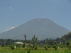 DSC05323.jpg (J0celyn79) Tags: asie bali indonésie karangasem id