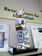 Churston Library Cat (Bridgemarker Tim) Tags: cats pussies libraries torbay churston feline