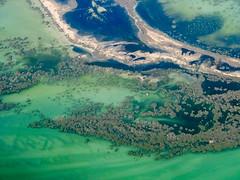 Abu Dhabi mangroves (Leonid Yaitskiy) Tags: uae abu dhabi mangroves nature water sea persian gulf green aerial view leonid iaitskyi fujifilm x10 abstract travel