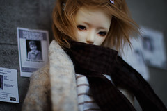 Homeward bound (karmadekarmade) Tags: bjd doll zaoll luv ninomiya