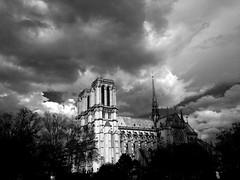 Notre Dame de Paris (Dr. StefanSteyn) Tags: notredamedeparis notredame paris france blanchetnoir blacknwhite bw cathedrale cathedral church seine frankryk parys katedraal frankrijk parijs iphoneography