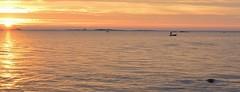 prkenskvll (Mika Lehtinen) Tags: prkenskvll hav prkens jakobstad finland pietarsaari meri sea sunsetting sundown sunset fisherman boat panorama