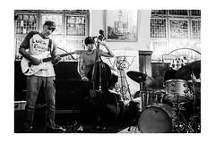 NO KISSING (pesce4221) Tags: musik chemnitz jazzclub bw bn sw