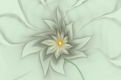 Daisy horizontal (Memotions) Tags: ontario canada abstract art floral digital computer guelph flame fractal conceptual patty ifs generated interpretive 2013 ohearn memotions kickham