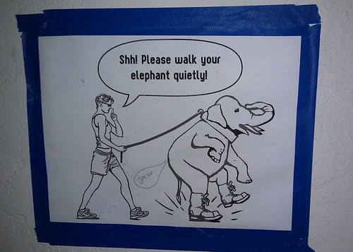 Shh! Please walk your elephant quietly!
