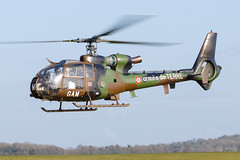 SA342M Gazelle (Steve Matterface) Tags: frencharmy alat armeedeterre middlewallop 3rhc 3ergimentdhlicoptresdecombat