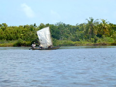 Waterway - Cte d'Ivoire (UNEP Disasters & Conflicts) Tags: environment climatechange ctedivoire unep environmentalassessment unitednationsenvironmentprogramme unepmission uneppostconflictenvironmentalassessment environmentalexperts