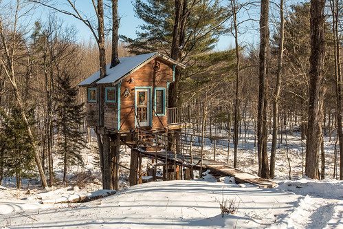 The Tiny Fern Forest Treehouse - Lincoln, VT - 2013, Feb - 05.jpg