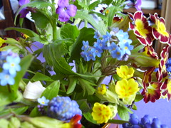 April2013 590 Spring flowers (monica_meeneghan) Tags: flowers stilllife spring coth mywinners damniwishidtakenthat artofimages frogpondflorals thesunshinegroup sunrays5