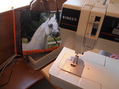 Sewing machine and first Grocery Feedbag (connors934) Tags: bag sewing jpg recycling feedbag reuse groceryfeedbag