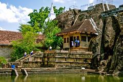 Anuradhapura, Sri Lanka (itcho_ittan) Tags: photography photos digitalcamera srilanka traveling 2009 kandy unawatuna sigiriya travelphotography srilankans travelinasia nikond80 srilankatea peopleofsrilanka travelinginasia srilankafarming