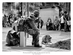 householdcompanions (<rs> snaps) Tags: park dog bag mexico mexicocity homeless alameda reneschlegel householdcompanions