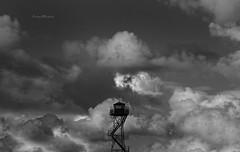 Sky watcher.
