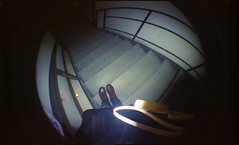 Diary #17. (Baracchina) Tags: red fish color eye film feet scale stairs cherry photography one vegan lomo lomography shoes colore dr coat diary steps ground fisheye iso negative doctor scala analogue 800 piedi docs diario analogica scarpe martens passi pellicola