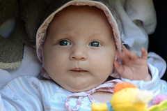queen mum (Wolfgang Binder) Tags: baby cute girl face kid nikon funny child waving d7000