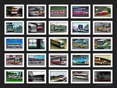 Bus Photo Collage (pantranco_bus) Tags: alps flexi sti fuso autobus bti nlex bip grandstar cbl prbl nissandiesel gtsi philippinerabbit saulogtransitinc genesistransportserviceinc pangasinanfivestar baliwagtransitinc busesinthephilippines pambusco hmtransport gvflorida candonbusline haranahtours nv620 exfoh almazoramotorscorporation santarosamotorworks pilipinashinoinc delmontemotorworksinc cubaobus pasaybus manilabuses avenidabus sampalocbus hyundauniverse divisoriabus daubus