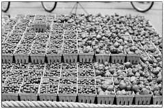 Berries - NYC (gastwa) Tags: nikon f6 afs nikkor 58mm f14g prime ilford hp5 plus film analog black white blackandwhite bw monochrome scenery landscape berries newyork nyc travel andrew gastwirth andrewgastwirth farmer market street bokeh