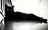 cat eyes (lorenzog.) Tags: cat 2016 bw blackcat cameraphone huaweip8lite pet rosmarino ilobsterit gatto gattonero cateyes