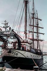 Tall ship (ibzsierra) Tags: tall ship barco boat vessel bateau ibiza eivissa baleares canon 7d 24105 is usm puerto harbor