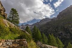 Passo dopo passo, salita dopo salita... (Ale*66*) Tags: granparadiso valledaosta italy trekking mountain montagna cime paesaggio landscape canon6d