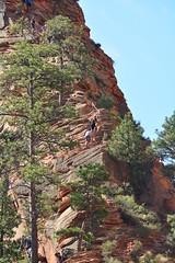 GEM_2982 (Gregg Montesi) Tags: zion national park angels landing