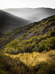 Summer myst [explored] (Kevin STRAGLIATI) Tags: view france clouds landscape tree nature ardeche hiking mountains campaign tourdebrison myst sky fog light