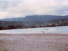 Kim Down by the Water - c1983 (kimstrezz) Tags: 1983 familytriptohawaiic1983 hanaleibay kauai kim