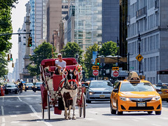 Horse and Carriage on Central Park West (deepaqua) Tags: horse taxi centralparkwest horseandcarriage columbuscircle nyc